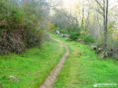 Ruta de los Castaños, Rozas de Puerto Real;viajes de aniversario puente 12 octubre puente de la con
